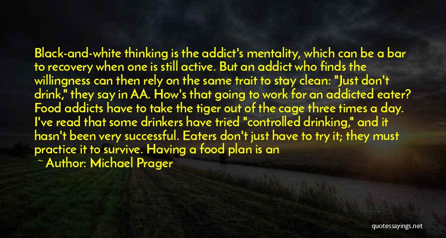 Addiction Recovery Quotes By Michael Prager