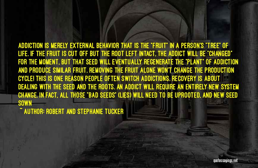 Addiction Recovery Quotes By Robert And Stephanie Tucker