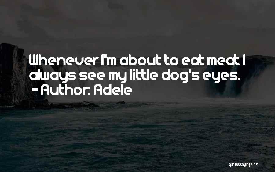 Adele Quotes 183961