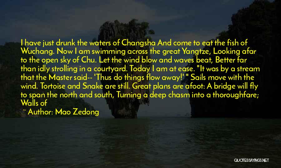 Afoot Quotes By Mao Zedong