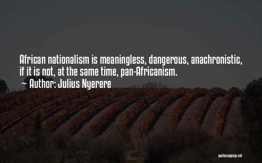 Africanism Quotes By Julius Nyerere