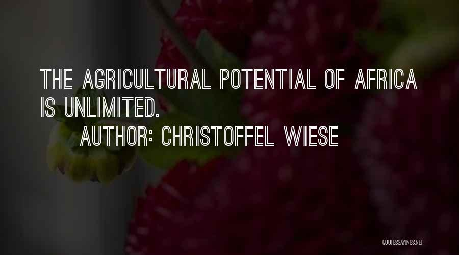 Africa's Potential Quotes By Christoffel Wiese