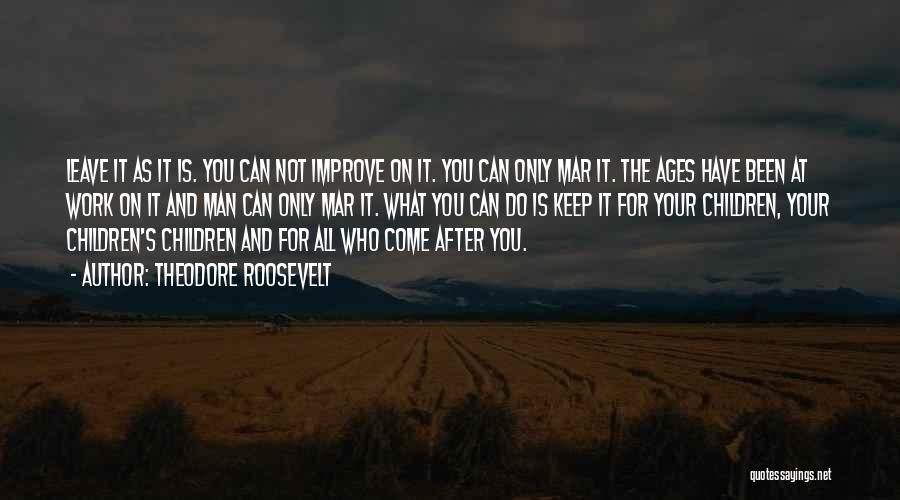 After Ages Quotes By Theodore Roosevelt