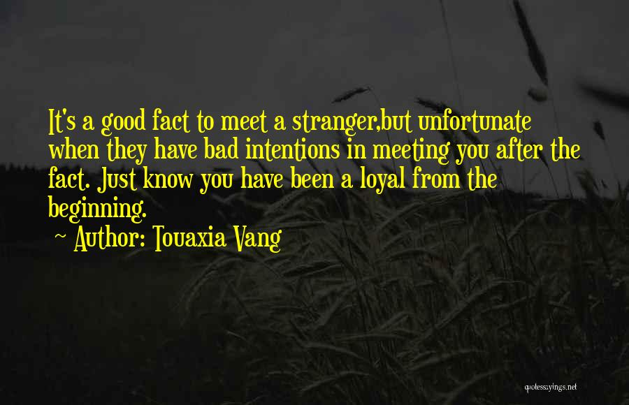 After Meeting You Quotes By Touaxia Vang