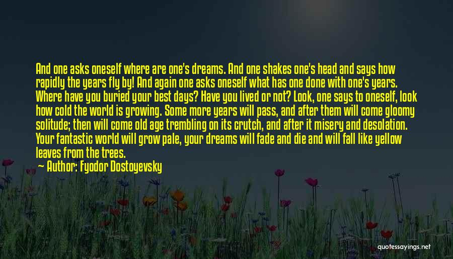 After Some Days Quotes By Fyodor Dostoyevsky