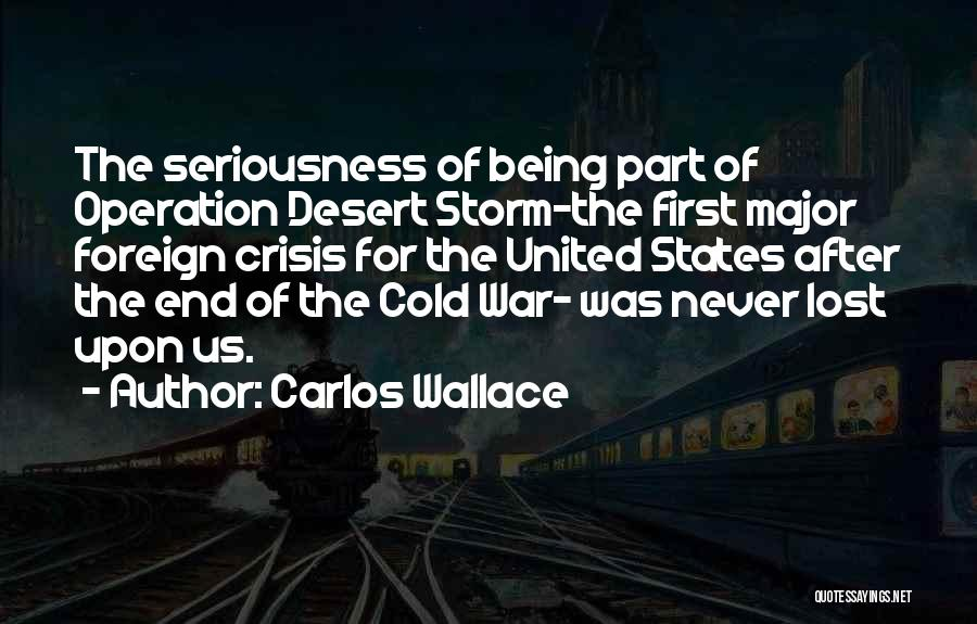 After The Storm Comes Quotes By Carlos Wallace