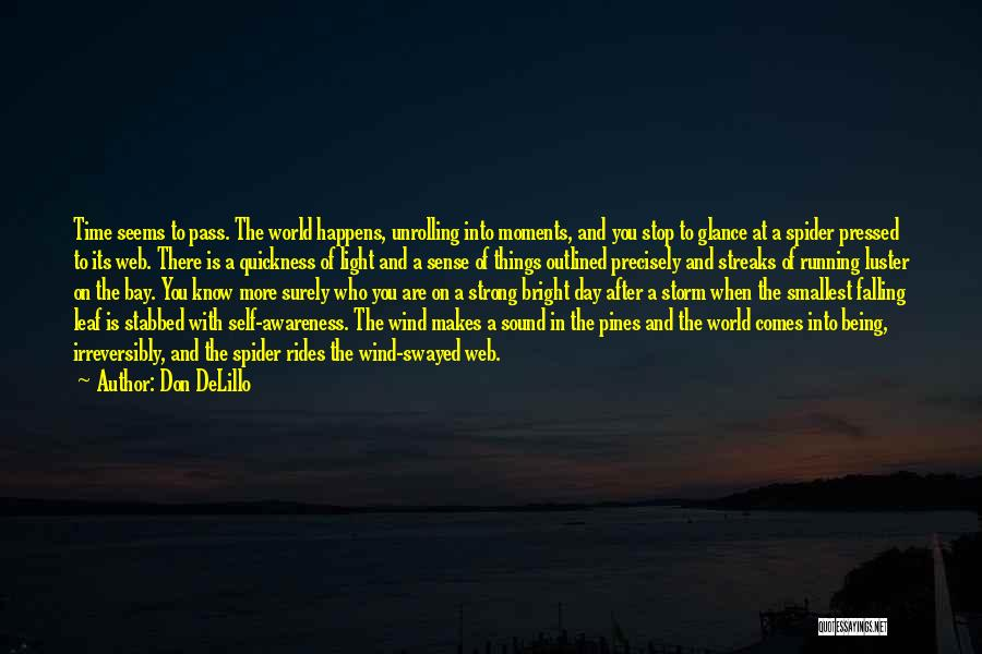 After The Storm Comes Quotes By Don DeLillo