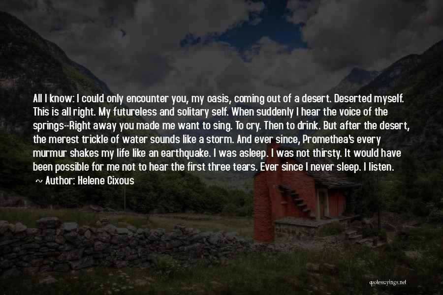 After The Storm Comes Quotes By Helene Cixous
