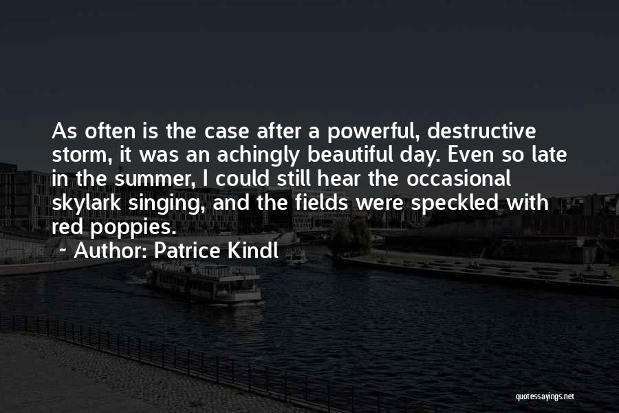 After The Storm Comes Quotes By Patrice Kindl