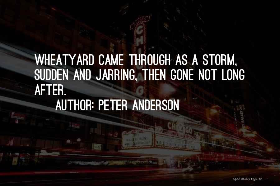 After The Storm Comes Quotes By Peter Anderson