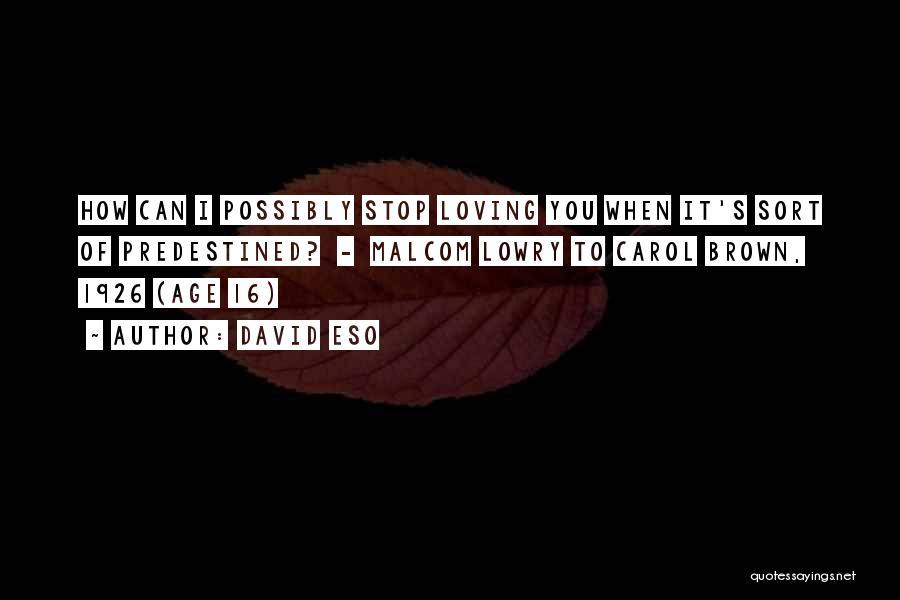 Age 16 Quotes By David Eso