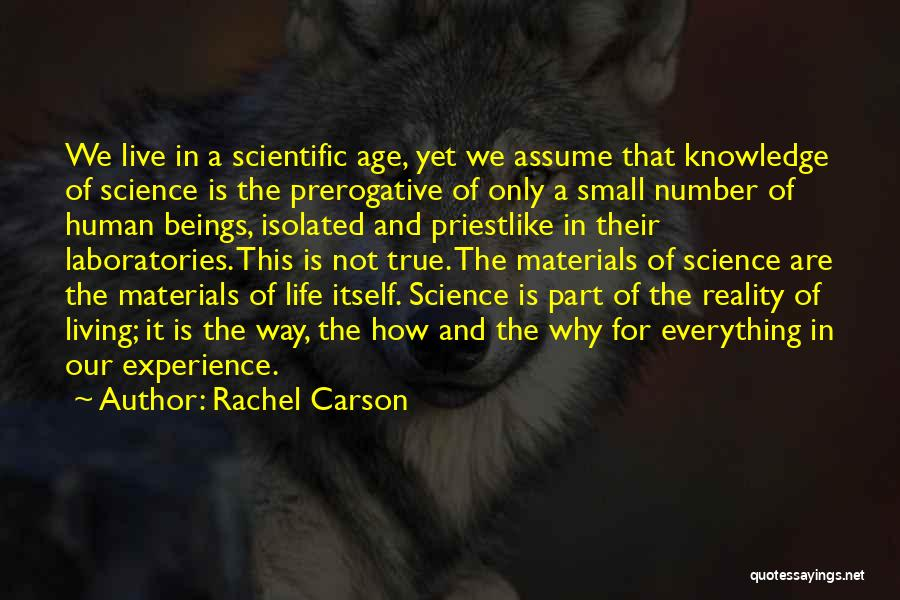 Age Is Not A Number Quotes By Rachel Carson