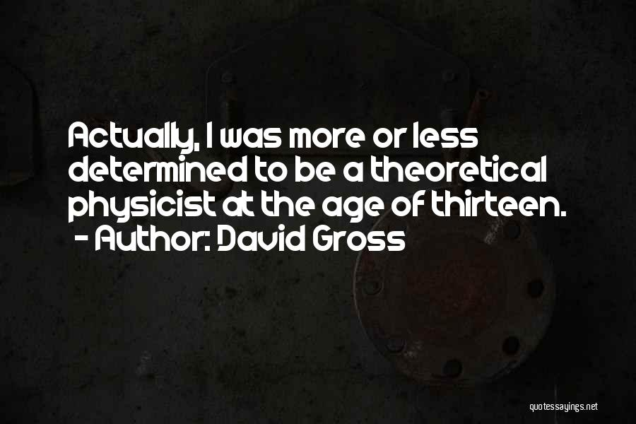 Age Thirteen Quotes By David Gross