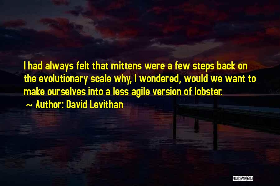 Agile Quotes By David Levithan