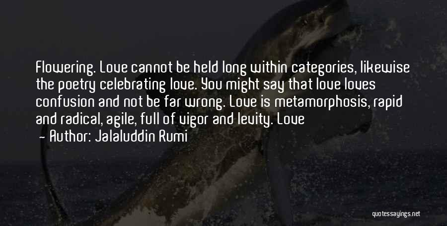 Agile Quotes By Jalaluddin Rumi