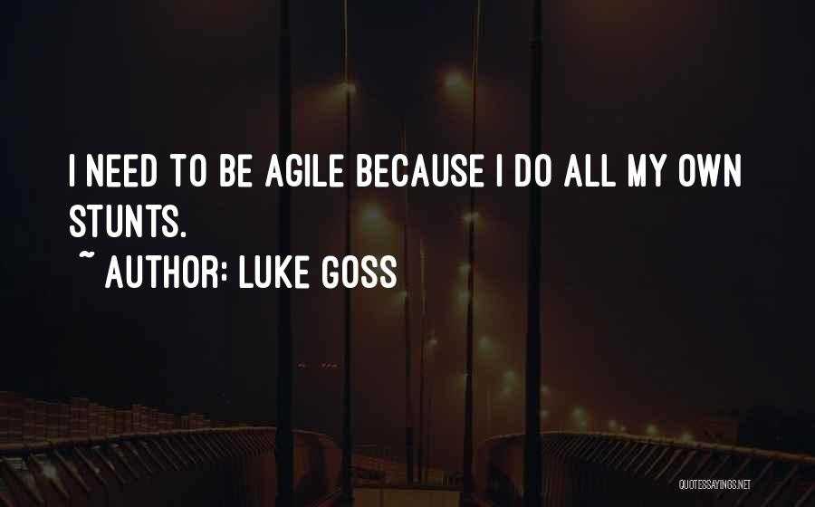 Agile Quotes By Luke Goss