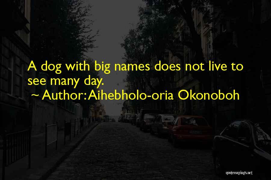 Aihebholo-oria Okonoboh Quotes 196661