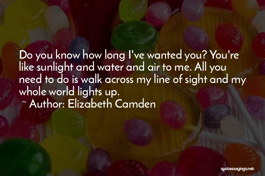 Air And Love Quotes By Elizabeth Camden