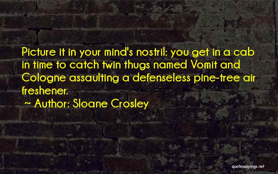Air Freshener Quotes By Sloane Crosley