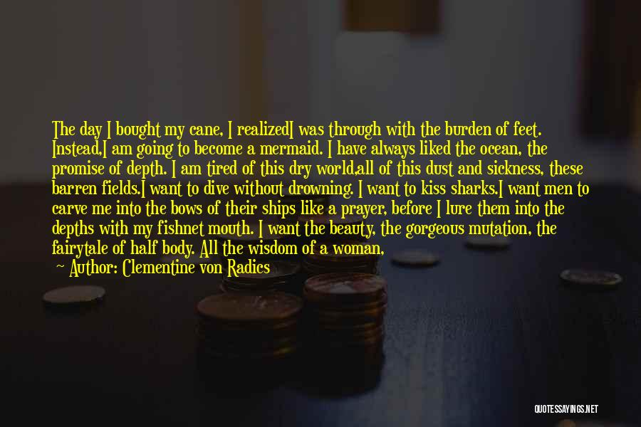 Air Sickness Quotes By Clementine Von Radics
