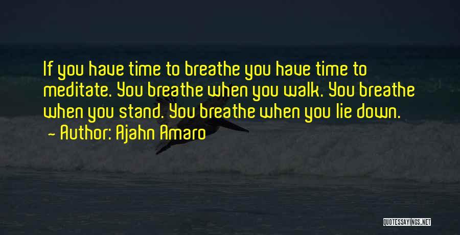 Ajahn Amaro Quotes 2098129