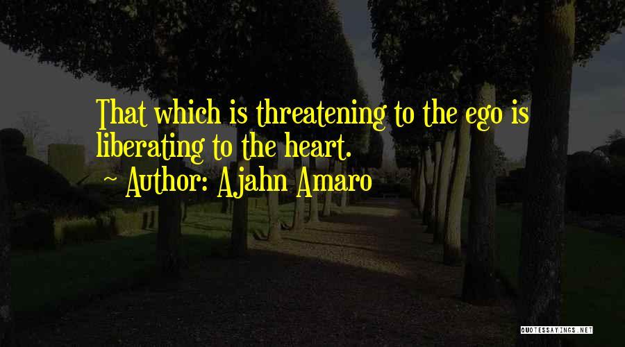 Ajahn Amaro Quotes 829071