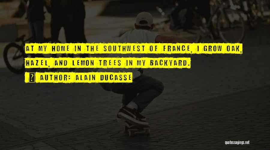 Alain Ducasse Quotes 471737