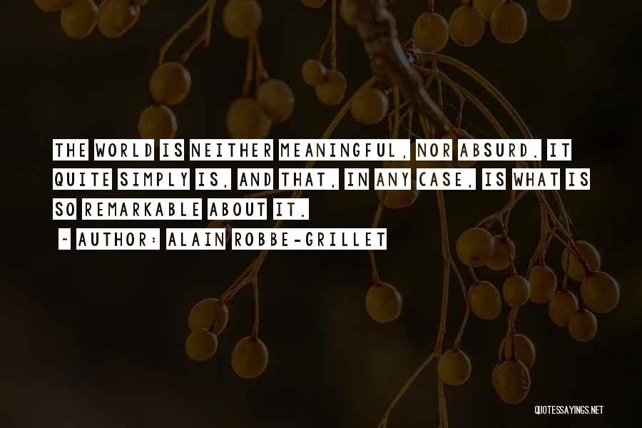 Alain Robbe-Grillet Quotes 2229518