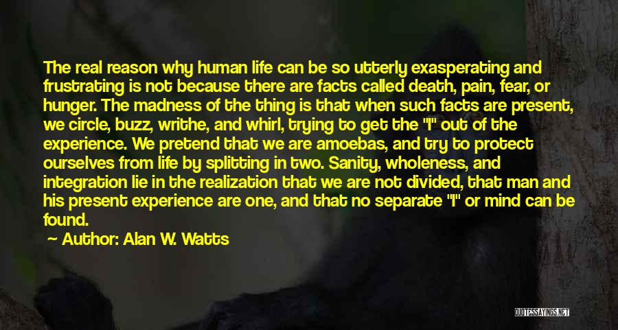 Alan W. Watts Quotes 779817