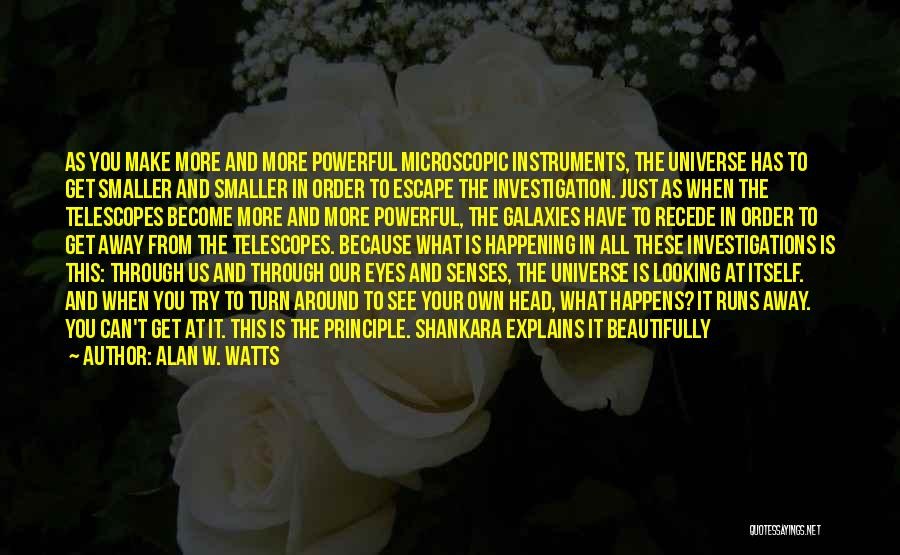 Alan W. Watts Quotes 872671