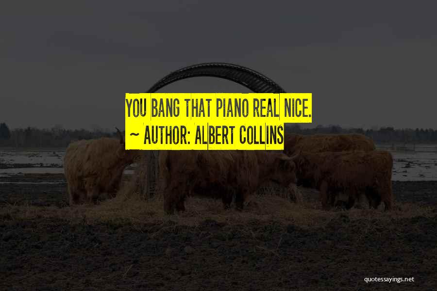 Albert Collins Quotes 1546686