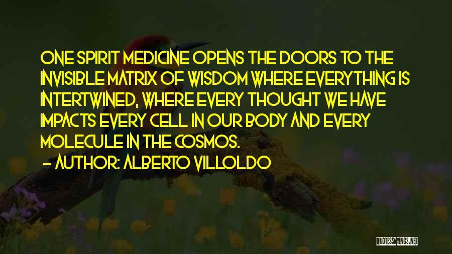 Alberto Villoldo Quotes 1444240
