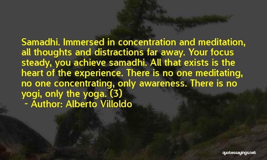 Alberto Villoldo Quotes 370100