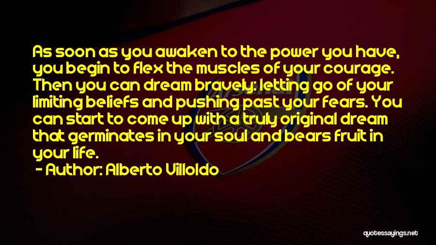 Alberto Villoldo Quotes 585422