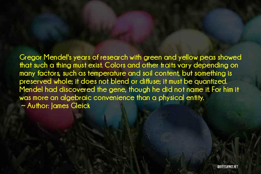 Algebraic Quotes By James Gleick