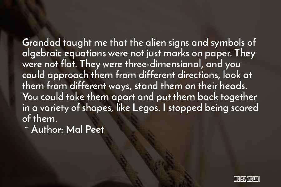 Algebraic Quotes By Mal Peet