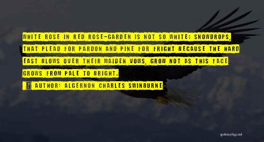 Algernon Charles Swinburne Quotes 272537