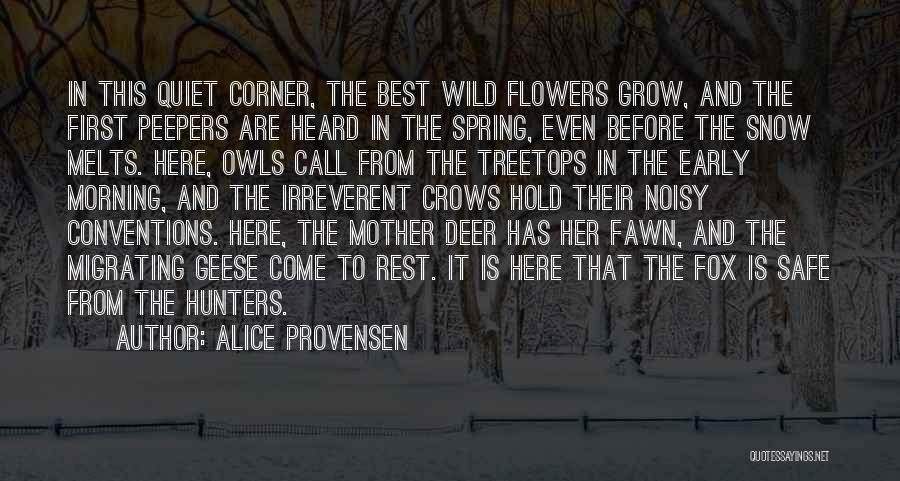 Alice Provensen Quotes 390998