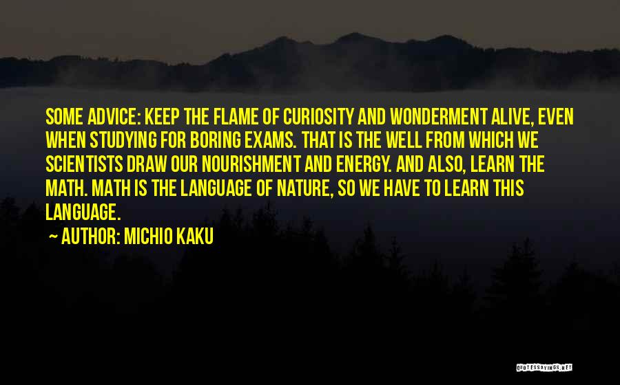 Alive And Well Quotes By Michio Kaku