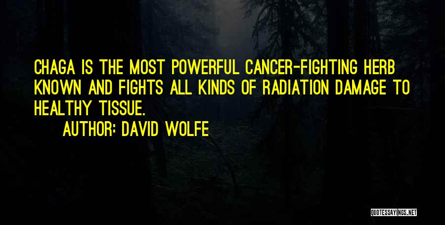 All Kinds Of Quotes By David Wolfe
