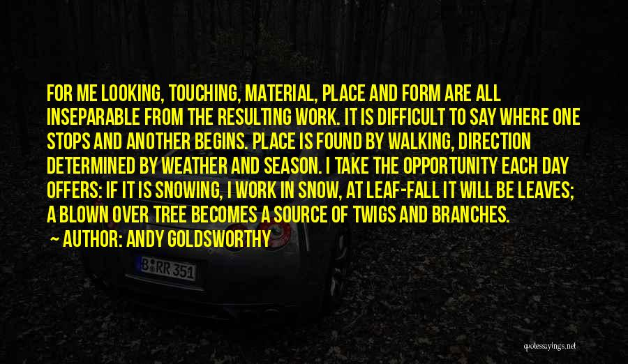 All Things Fall Into Place Quotes By Andy Goldsworthy