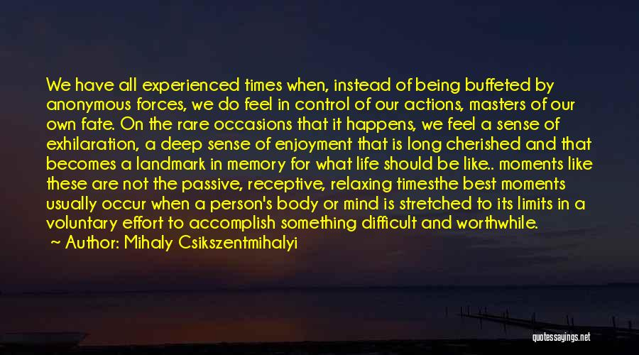 All We Have Are Memories Quotes By Mihaly Csikszentmihalyi