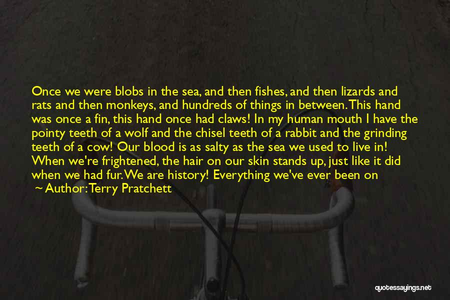 All We Have Are Memories Quotes By Terry Pratchett