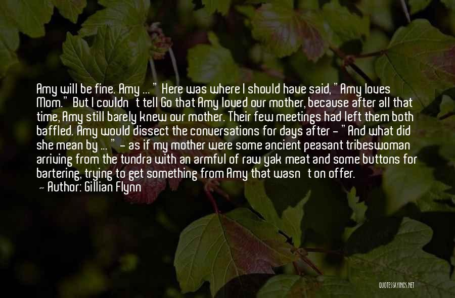 All Will Be Fine Quotes By Gillian Flynn