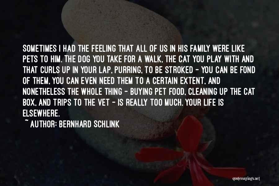 All You Need In Life Is Family Quotes By Bernhard Schlink