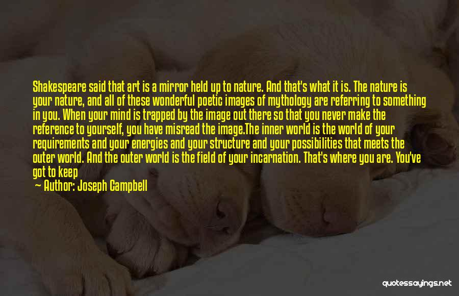 All You Ve Got Quotes By Joseph Campbell