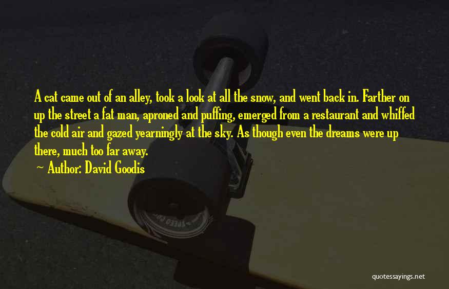 Alley Cat Quotes By David Goodis