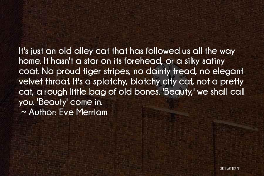 Alley Cat Quotes By Eve Merriam