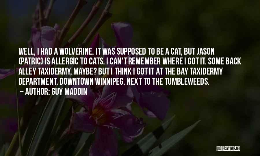 Alley Cat Quotes By Guy Maddin