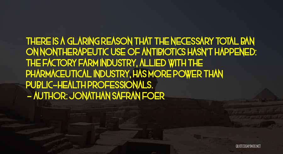 Allied Health Quotes By Jonathan Safran Foer